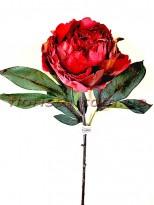 Пион новогодний Бордово-красный премиум класса 56 см гол. 10 см