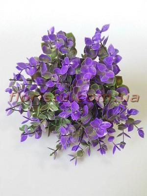 Самшит фиолетовый с зеленым веточки пучек 10 шт. 24 см
