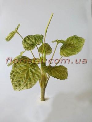 Пеперомия искусственная из латекса зеленая