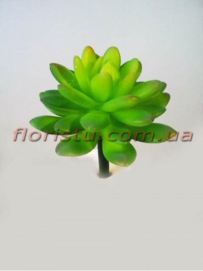 Искусственный суккулент пахифитум Зеленый 9 см