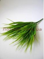 Трава простая осока