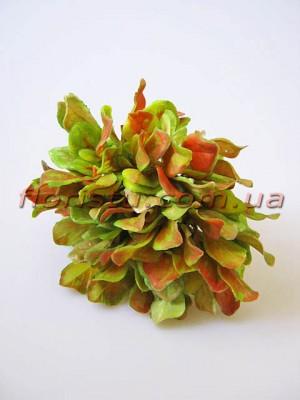Добавка флористическая осенняя пучек 6 веточек 20 см