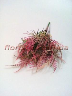 Аспарагус мини премиум класса Розово-зеленый 30 см