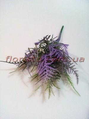 Аспарагус мини премиум класса Фиолетово-зеленый 30 см
