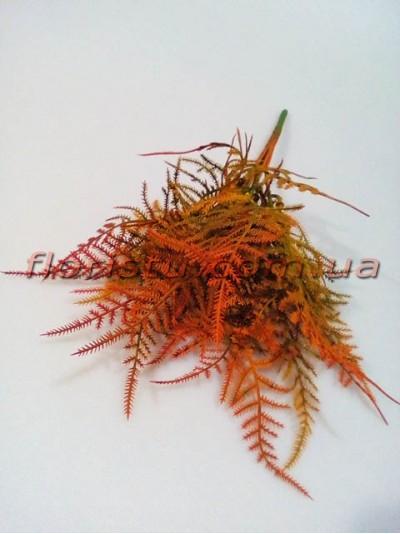 Аспарагус мини премиум класса Коричнево-бордовый 30 см