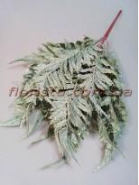 Папоротник нефролепсис премиум Дымчато-зеленый 45 см