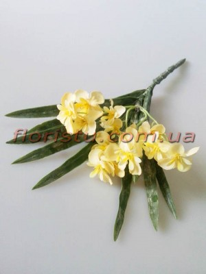 Первоцвет Прованс ваниль 30 см