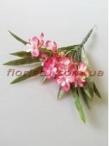 Первоцвет Прованс пепельно-розовый 30 см