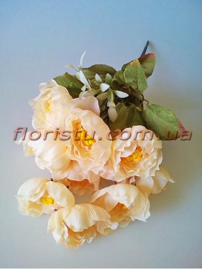 Камелии Винтаж мини персиково-кремовые 11 гол. 5 см