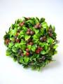 Веточки тиса с ягодками бордо пучек 6 шт. 18 см