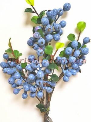 Ветка с ягодами черники голубики