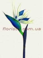 Стрелиция латексная премиум класса Синяя гол. 15 см 100 см