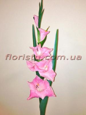 Гладиолус латексный премиум класса Розовый 1 м
