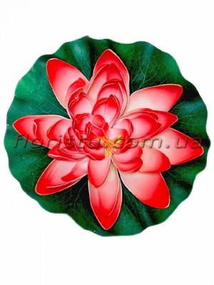 Лотос латексный плавающий Розово-красный 28 см