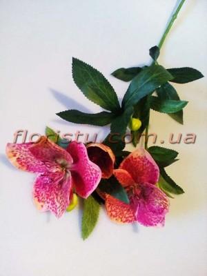 Хелеборус искусственный Розово-бордовый 65 см