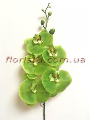 Орхидея фаленопсис латексная премиум класса Зеленая 5 гол. 84 см