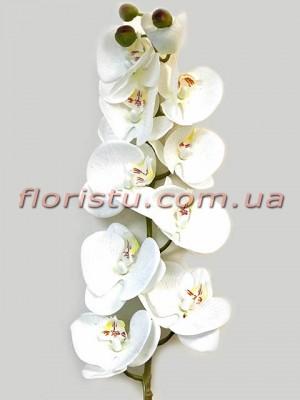 Орхидея фаленопсис латексная Белая 10 гол. 76 см