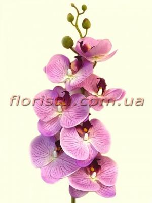 Орхидея фаленопсис латексная Сиреневая 7 гол. 90 см