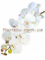 Орхидея фаленопсис латексная Белая 9 гол. 100 см