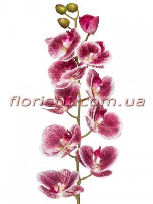Орхидея фаленопсис латексная Бордово-лиловая 10 гол. 76 см
