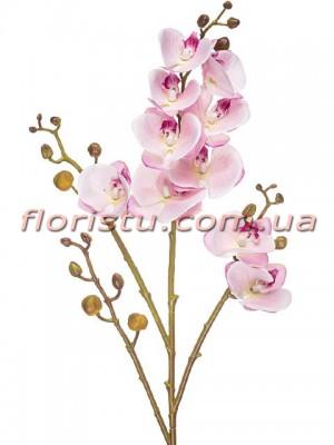 Орхидея фаленопсис латексная Нежно-розовая 4 ветки 80 см