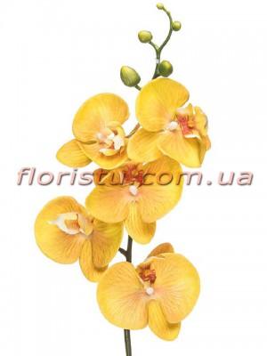 Орхидея фаленопсис латексная Премиум Желтая гол.10 см 87 см