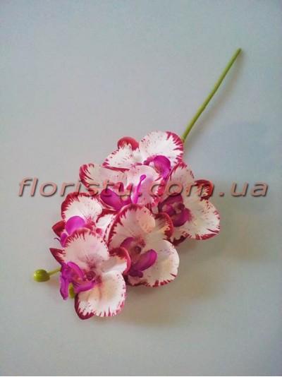Орхидея фаленопсис мини латексная белая с бордово-фиолетовым 6 гол. 39 см