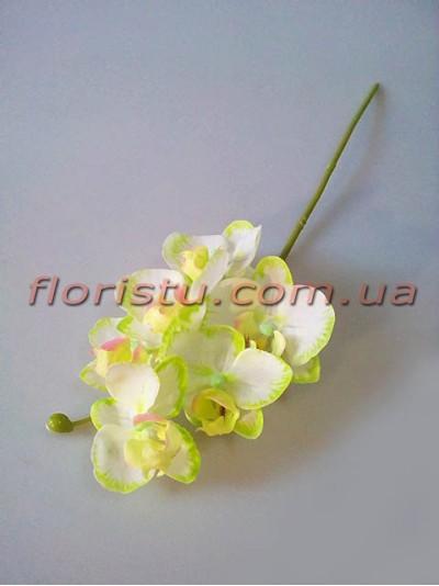 Орхидея фаленопсис мини латексная белая с нежно-салатовым 6 гол. 39 см