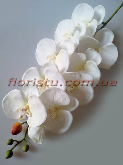 Орхидея фаленопсис латексная Премиум люкс Белая 9 гол. 105 см