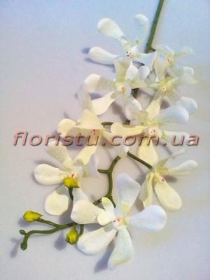 Орхидея цимбидиум латексная Белая 90 см