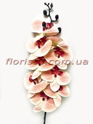 Орхидея фаленопсис латексная премиум класса Кремово-бордовая 9 гол. 90 см