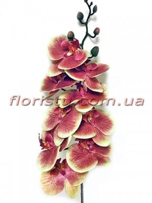 Орхидея фаленопсис латексная премиум класса Бордово-желтая 9 гол. 90 см