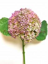 Бузина ветка премиум Сиреневая 32 см гол. 10 см