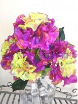 Гортензия премиум фиолетово-салатовая куст 5 гол. 15 см