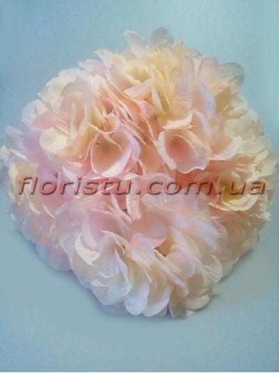 Гортензия премиум класса Нимфа нежно-розовая 7 гол. 15 см
