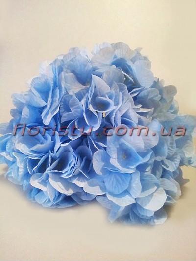 Гортензия премиум класса Нимфа нежно-голубая 7 гол. 15 см