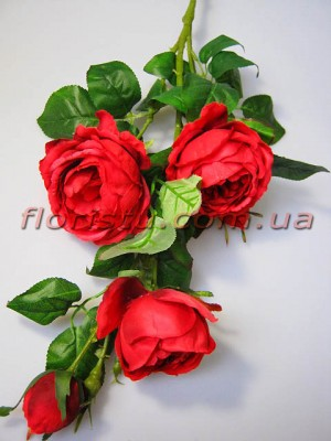 Роза Остин пурпурно-красная гол. 9 см