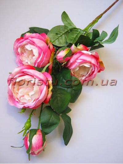 Роза Остин нежно-розовая гол. 9 см