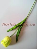 Тюльпан из латекса премиум класса Нежно-салатовый 65 см