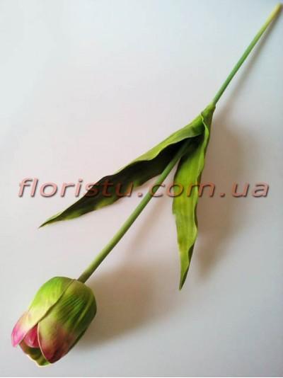 Тюльпан из латекса премиум класса Зеленый с бордо 65 см