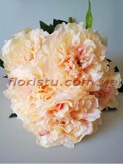 Букет махровых пионов премиум класса Кремово-розовый 55 см гол. 17 см