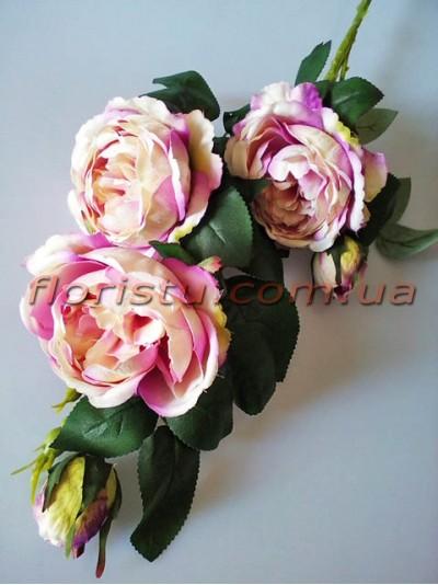 Роза Остин сиреневая гол. 9 см