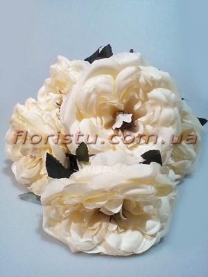 Букет из чайных роз премиум класса Шик кремовый 5 гол. 15 см