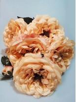 Букет из чайных роз премиум класса Шик бежевый 5 гол. 15 см