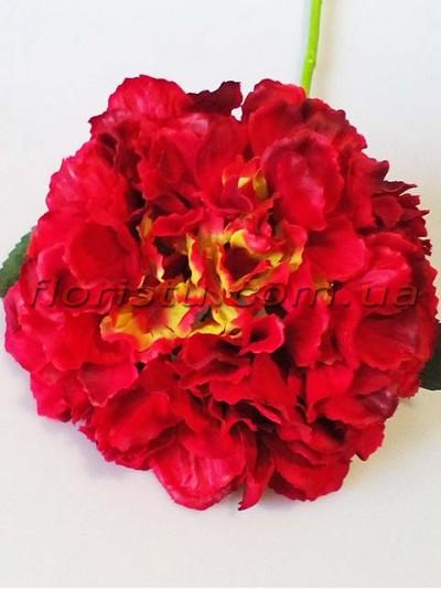 Гортензия искусственная премиум класса Royal бордово-красная гол. 20 см 55 cм