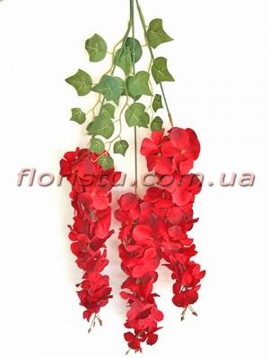 Глициния Винтаж премиум класса Бордово-красная 90 см