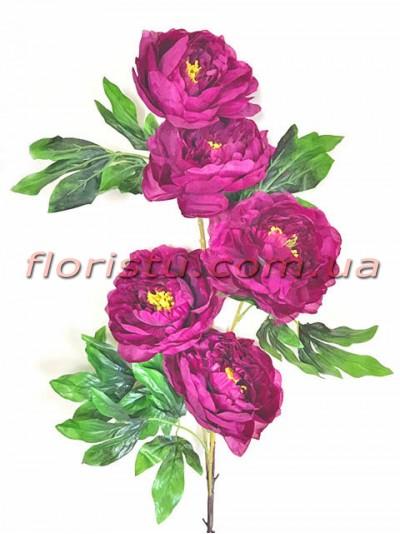 Пион высокий премиум класса Фиолетовый 1,20 м 5 гол. 13 см
