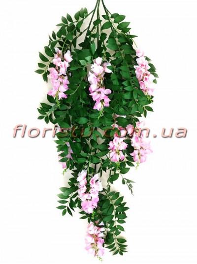 Глициния ампельная премиум класса Розовая 130 см