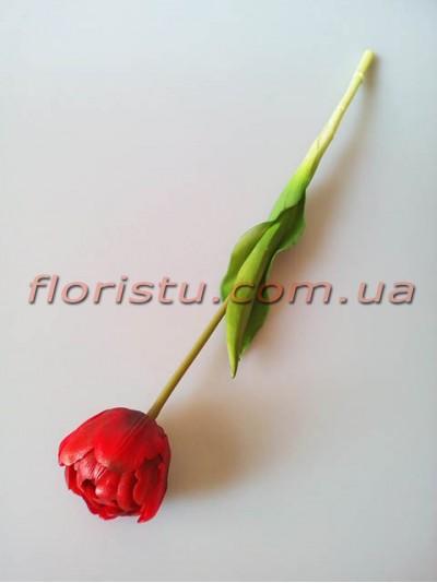 Тюльпан латексный премиум класса Бордово-красный 44 см