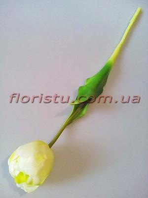 Тюльпан латексный премиум класса Бело-салатовый 44 см